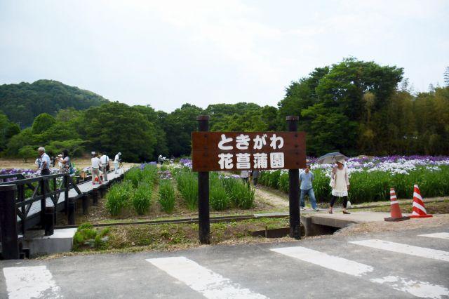 makkunさまより JPG_2011.jpg